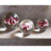 Fleur dans une boule de verre de la marque Hkliving